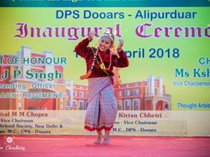 DPS Cultural Program